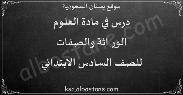 درس الوراثة والصفات للصف السادس الابتدائي بستان السعودية